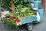 Fruitsaleby Willem