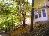 Fall colors in Port Washington