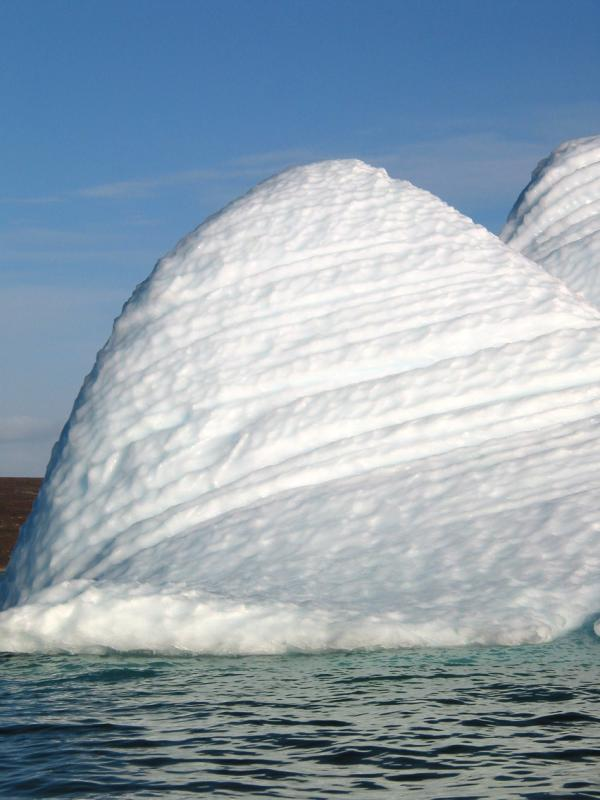 We thought this iceberg looked like a Molar