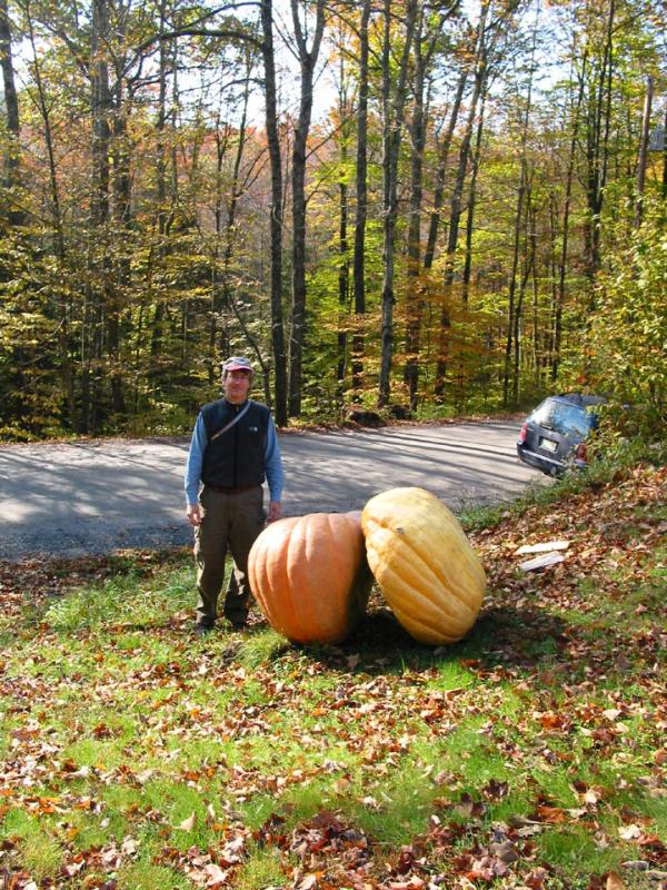 Peter and the pumpkins