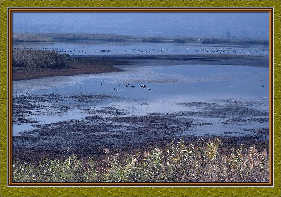 Again, marshlands of Hachula