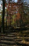 Hog Rock Trail.jpg