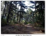 101803_hike_at_redwood_regional_park