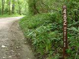 Forest Service Road 482 to Old Fort NC - road to the red max.