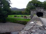 Bridge to Lord Brandons Cottage.jpg