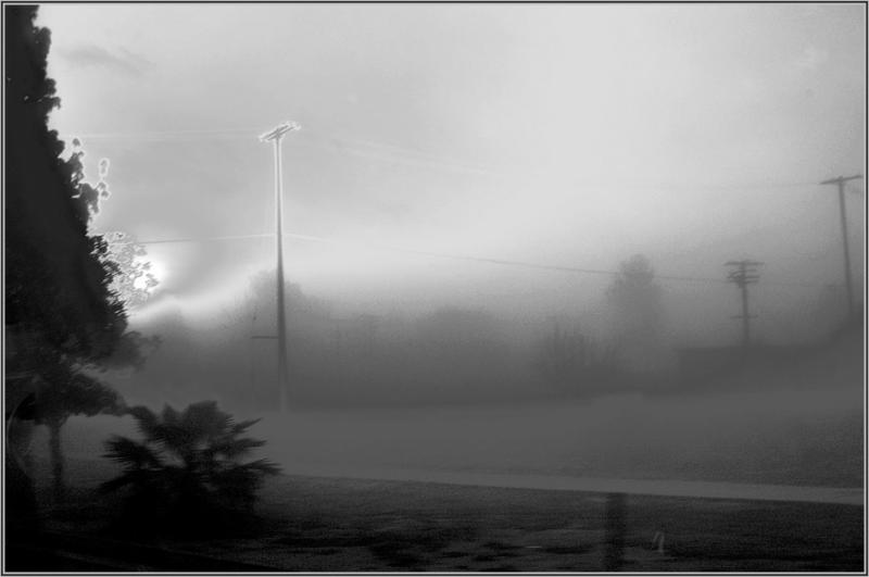 electrified fog