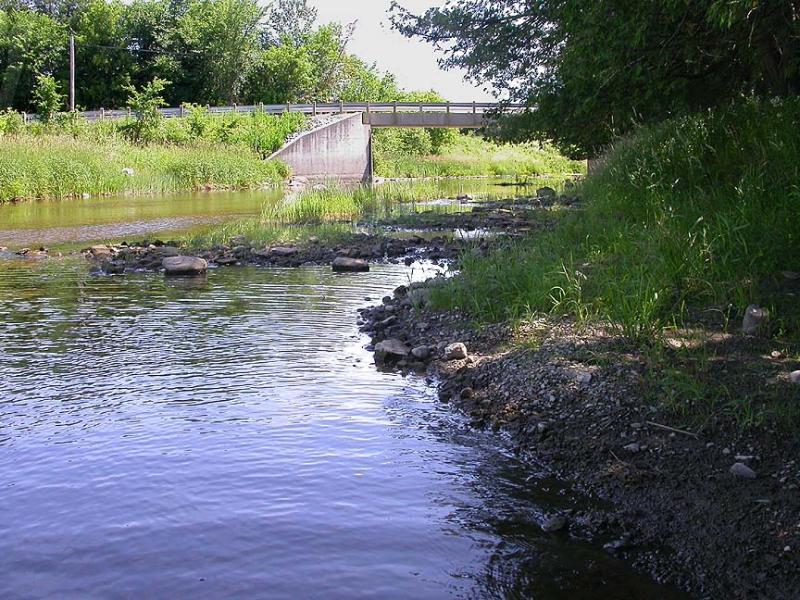 shoreline -- south side - downstream view