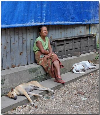Lazy day - Hledan Market, Yangon