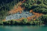 Lake and Autumn Shrubbery