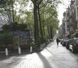 Evening on Looierstraat (lawyer street)