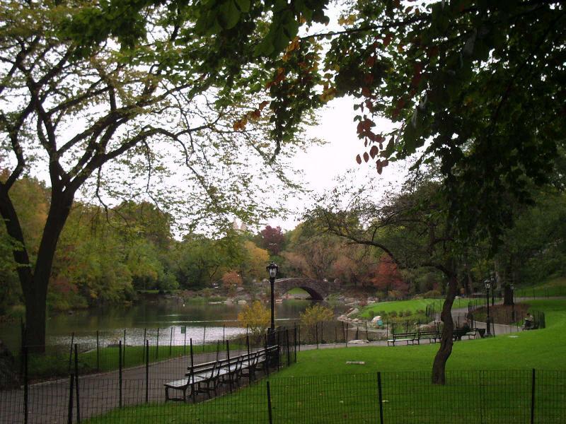 Central Park South  Pond  View