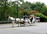 Carriage Ride at  CPW 70s Entrance