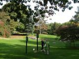 Central Park Cedar Hill