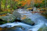 Stream at Jones Gap State Park in Autumn