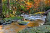 Jones Gap State Park in Autumn