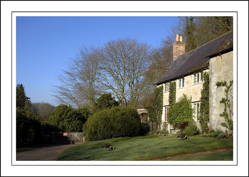 Estate houses ~ Stourhead