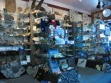 Best Fossil Shop in The World!