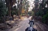 oasis-horse-ride.jpg