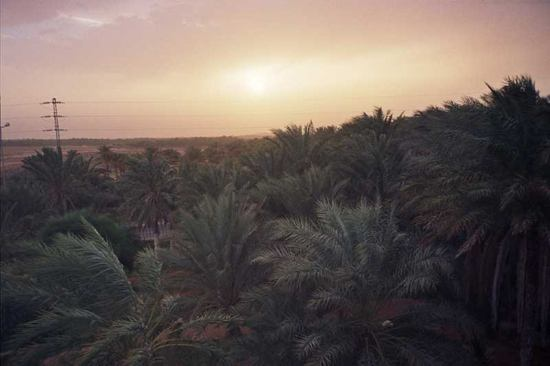 Sahara, view from hotel