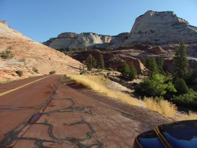 Road through Zion National Park