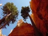 Bryce Canyon DSC04206.JPG