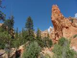 Bryce Canyon  DSC04207.JPG
