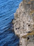 Seaside Basalt Columns - Giant's Causeway (Co. Antrim)