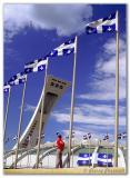 Drapeaux du Québec  /  Quebec Flags