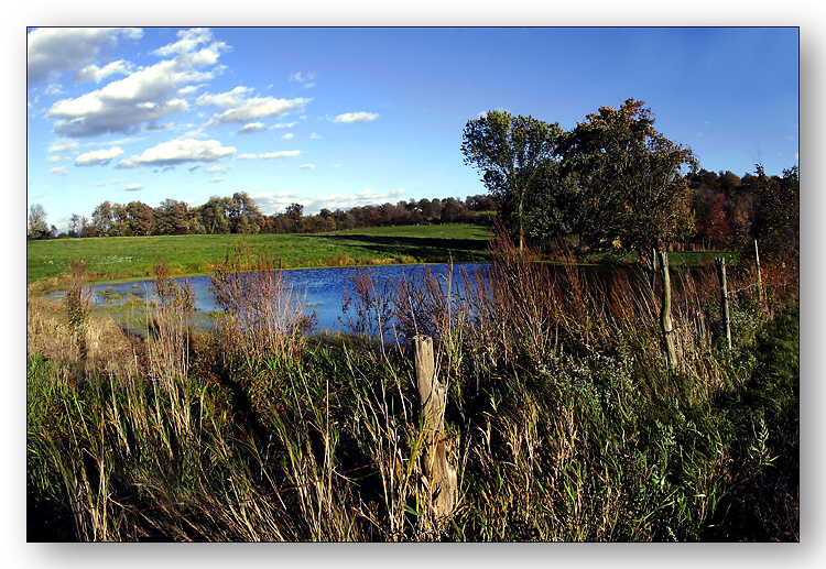 Seward Road Pond