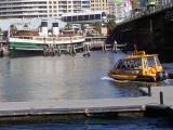 Water Taxi - Darlington Harbour.jpg