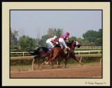 Fort Erie Race Track 11