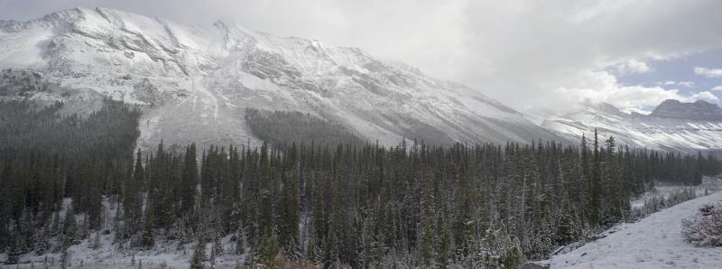 Vicinity of Columbia Icefield (Icefield Pano 2.jpg)