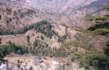 Narkanda_Valley.JPG