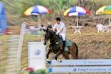 Horse °¨³N