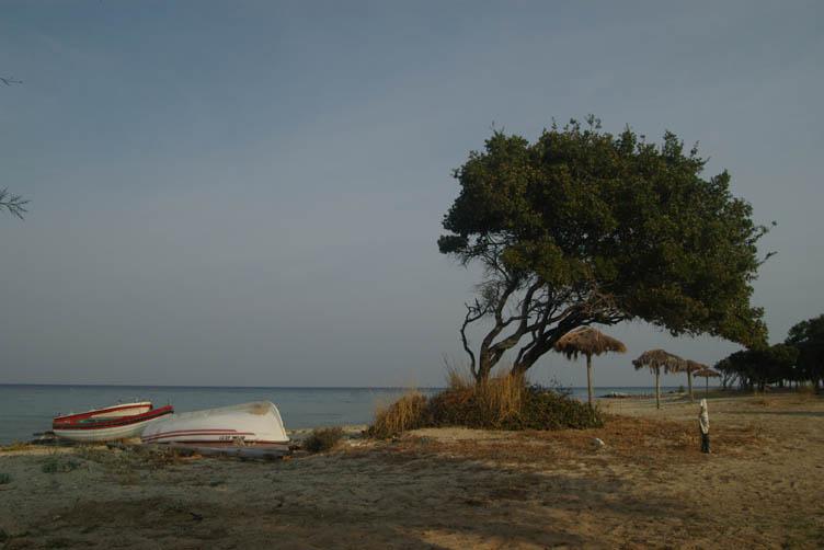 Beach of Skala Prinos