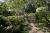 Garden, ultra-wide