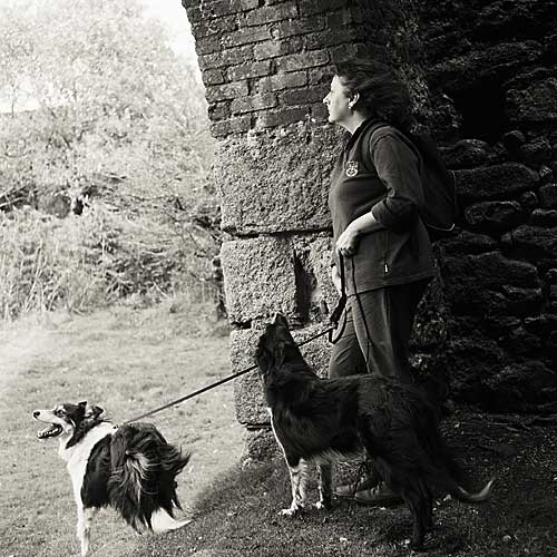 Linda and the dogs