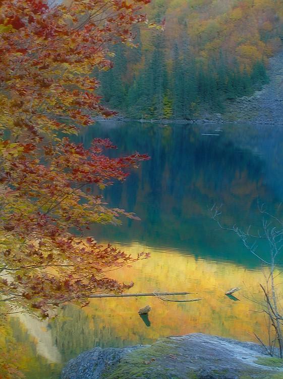 P9262344 blur_std.jpg