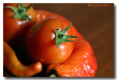 First Tomato  /  July 10, 2004