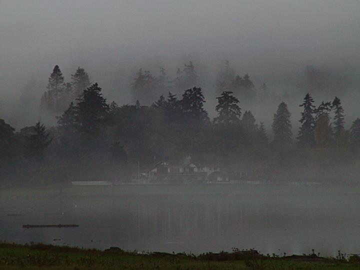 foggy lagoon.jpg