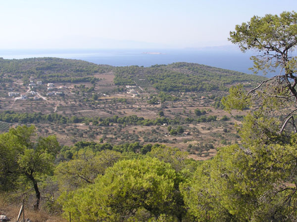 View of Aegina from Temple of Aphaia