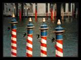Venice119.jpg