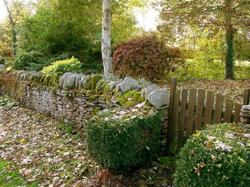Autumnal Garden in England
