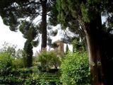 Through the Gardens