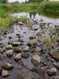 Jock River - main channel of river at small weir just downstream of confluence with King's Creek