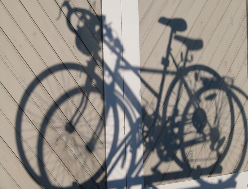 <b>Shadow Cycling*</b><br><i>Phil Johnson</i>
