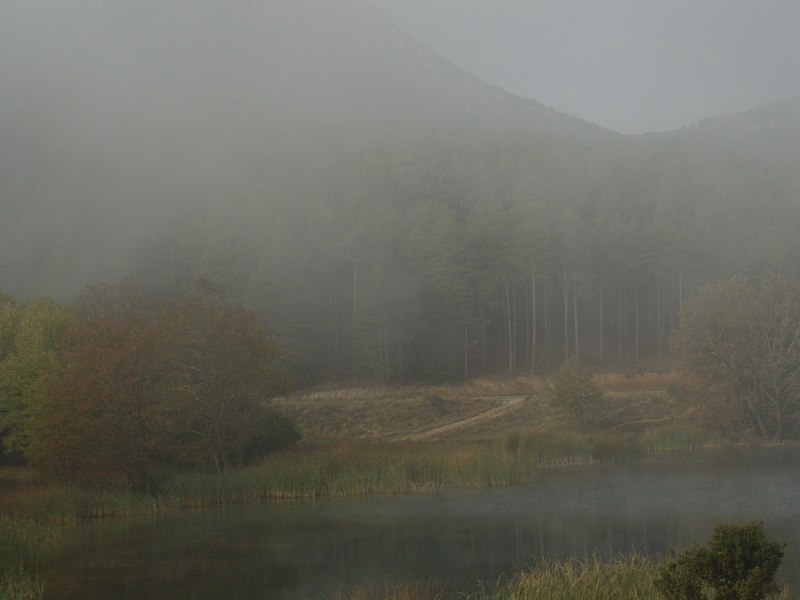 Occasional mist, October 2004