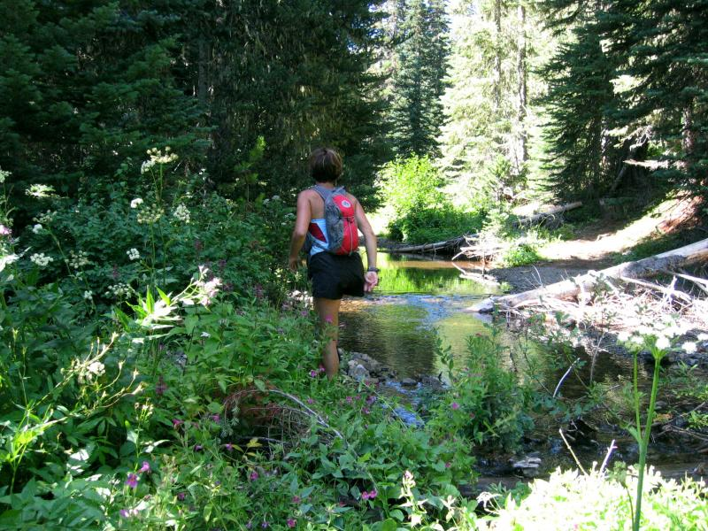 Ronda figures out how to cross the creek
