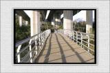 Foot Bridge 1