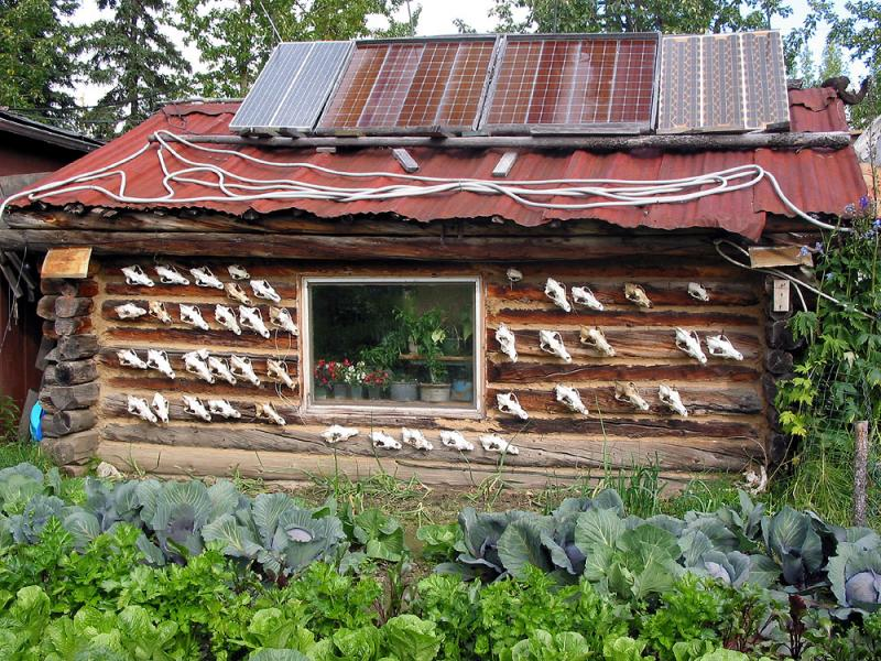 Wolf hunters cabin
